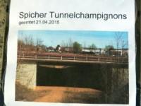 Spicher Tunnelchampignons